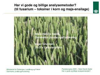 Har vi gode og billige analysemetoder? (til fusarium – toksiner i korn og majs-ensilage)