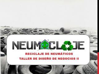Reciclaje de neumáticos Taller de diseño de negocios II