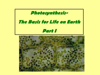 Photosynthesis- The Basis for Life on Earth Part I
