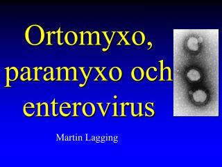 Ortomyxo, paramyxo och enterovirus