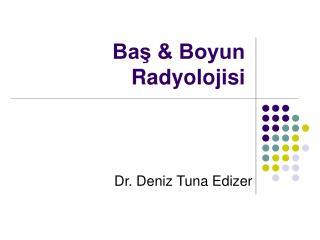 Bas  Boyun Radyolojisi