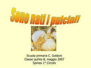 Scuola primaria C. Goldoni Classe quinta B, maggio 2007 Spinea 1° Circolo