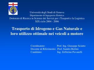 Coordinatore:                  Prof. Ing. Giuseppe Sciutto