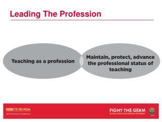 Leading The Profession