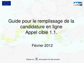 Guide pour le remplissage de la candidature en ligne Appel cibl  1.1.