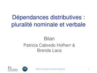 Dépendances distributives :  pluralité nominale et verbale