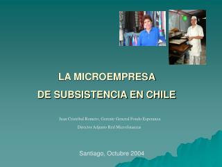 LA MICROEMPRESA  DE SUBSISTENCIA EN CHILE