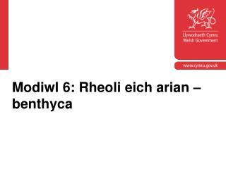 Modiwl 6: Rheoli eich arian – benthyca