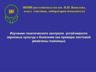 ВНИИ растениеводства им. Н.И. Вавилова,  отдел  генетики, лаборатория иммунитета