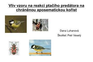 Vliv vzoru na reakci ptačího predátora na chráněnou aposematickou kořist