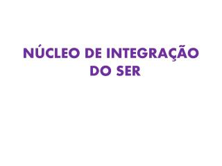 NÚCLEO DE INTEGRAÇÃO DO SER
