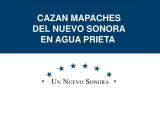 CAZAN MAPACHES DEL NUEVO SONORA EN AGUA PRIETA