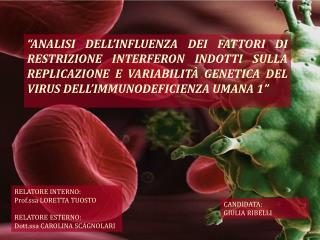RELATORE INTERNO: Prof.ssa LORETTA TUOSTO RELATORE ESTERNO: Dott.ssa CAROLINA SCAGNOLARI