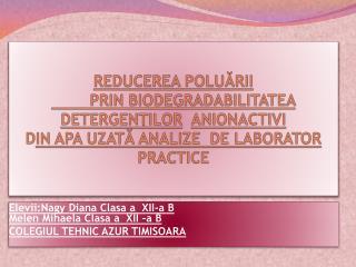 Elevii: Nagy Diana Clasa a  XII-a B Melen Mihaela Clasa a  XII –a B COLEGIUL TEHNIC AZUR TIMISOARA