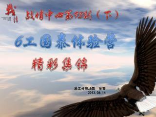 浙江分市场部  吴青 2013. 0 6.14
