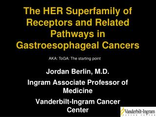 The HER Superfamily of Receptors and Related Pathways in Gastroesophageal Cancers