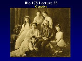 Bio 178 Lecture 25