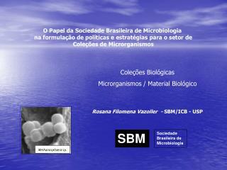O Papel da Sociedade Brasileira de Microbiologia  na formula  o de pol ticas e estrat gias para o setor de  Cole  es de