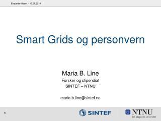 Smart Grids og personvern