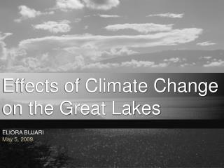 Effects of Climate Change on the Great Lakes
