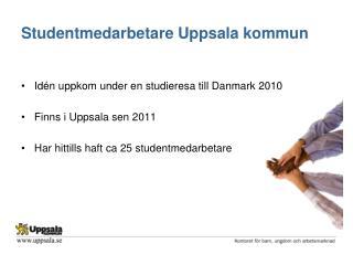 Studentmedarbetare Uppsala kommun