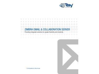 Raybiztech Zimbra Email Services
