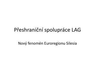 P?eshrani?n� spolupr�ce LAG