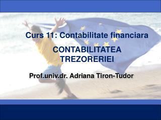 Prof.univ.dr. Adriana Tiron-Tudor
