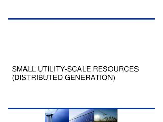 Small UTILITY-Scale Resources (Distributed Generation)