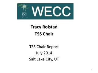 Tracy  Rolstad TSS Chair TSS  Chair Report  July 2014 Salt Lake City, UT
