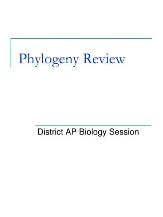Phylogeny Review