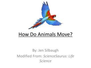 How Do Animals Move?