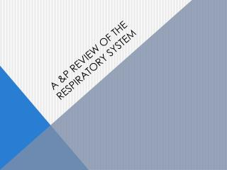 A &P REVIEW OF THE RESPIRATORY SYSTEM