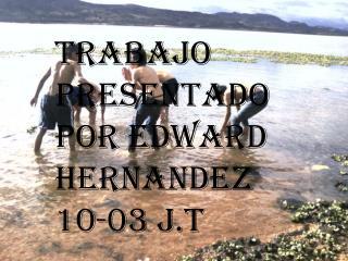 TRABAJO PRESENTADO POR EDWARD HERNANDEZ 10-03 J.T