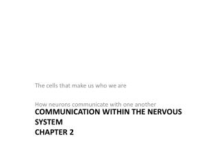 Communication within the Nervous System Chapter 2