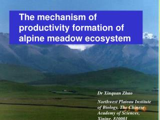 The mechanism of productivity formation of alpine meadow ecosystem