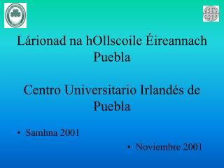 L�rionad na hOllscoile �ireannach Puebla Centro Universitario Irland�s de Puebla