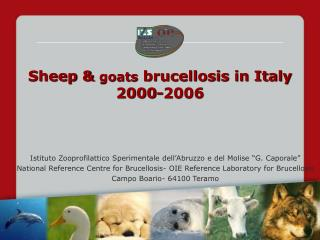 Sheep &  goats  brucellosis in Italy 2000-2006