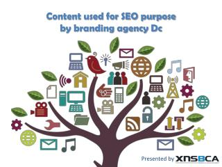 content used by branding agencies in Washington dc for seo
