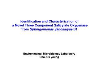 Identification and Characterization of  a Novel Three Component Salicylate Oxygenase  from Sphingomonas yanoikuyae B1