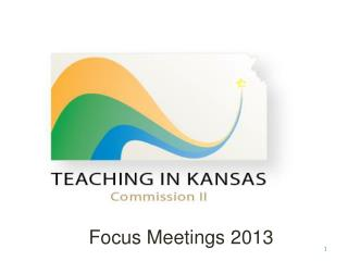Focus Meetings 2013