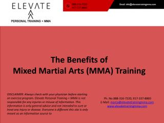 The Benefits of  Mixed  Martial Arts (MMA ) Training
