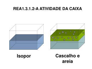 REA1.3.1.2-A ATIVIDADE DA CAIXA