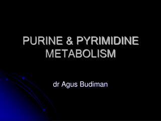 PURINE  PYRIMIDINE METABOLISM