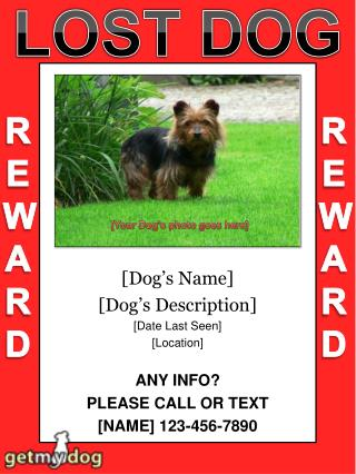 [Dog ' s Name] [Dog ' s Description] [Date Last Seen] [Location] ANY INFO? PLEASE CALL OR TEXT