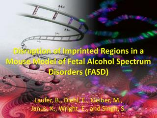 Disruption of Imprinted Regions in a Mouse Model of Fetal Alcohol Spectrum Disorders (FASD)