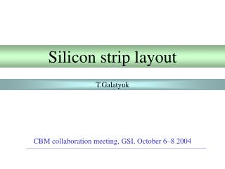 Silicon  strip  layout