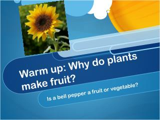 Warm up: Why do plants make fruit?