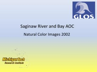Saginaw River and Bay AOC