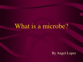 What is a microbe?